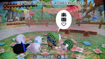 airu_01.jpg